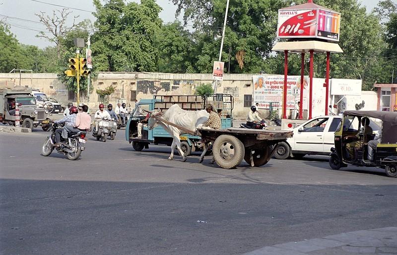 2005-india-rol05-0019