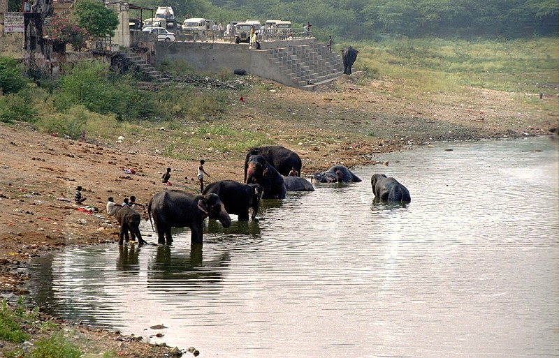 2005-india-rol06-0036