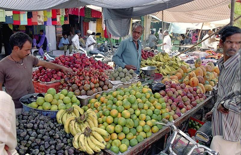 2005-india-rol12-0024