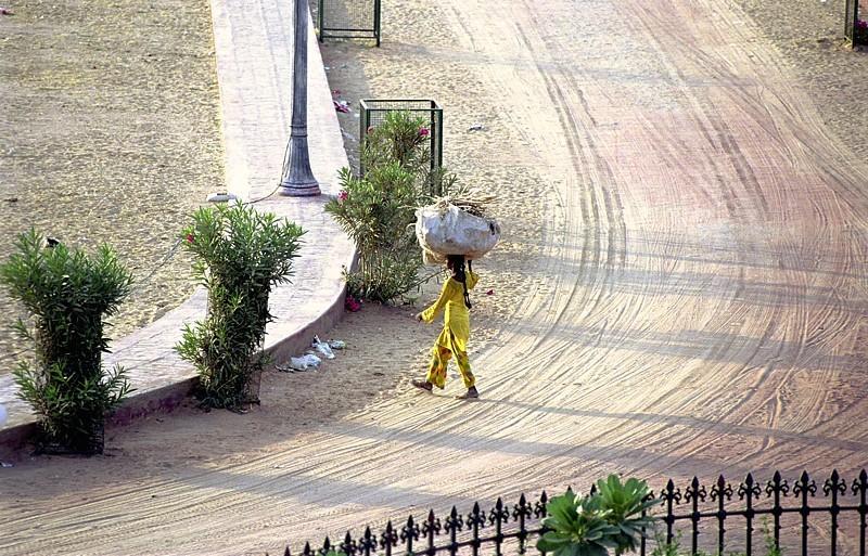 2005-india-rol17-0008