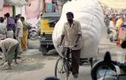 2005-india-rol06-0010