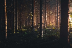 Unsplash-Landscape-112