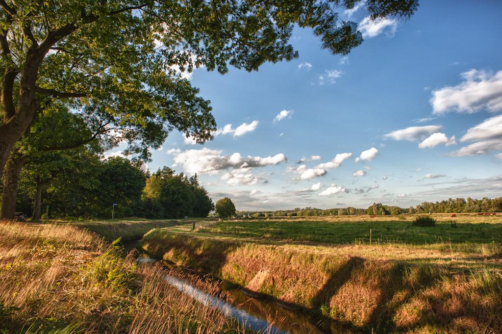 Brabant 1
