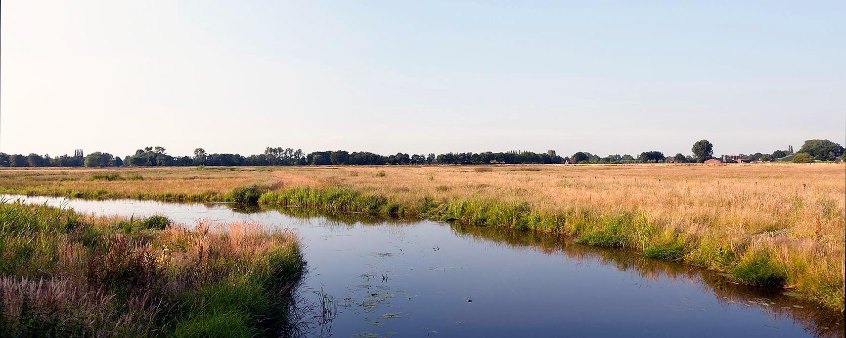 Brabant landscape