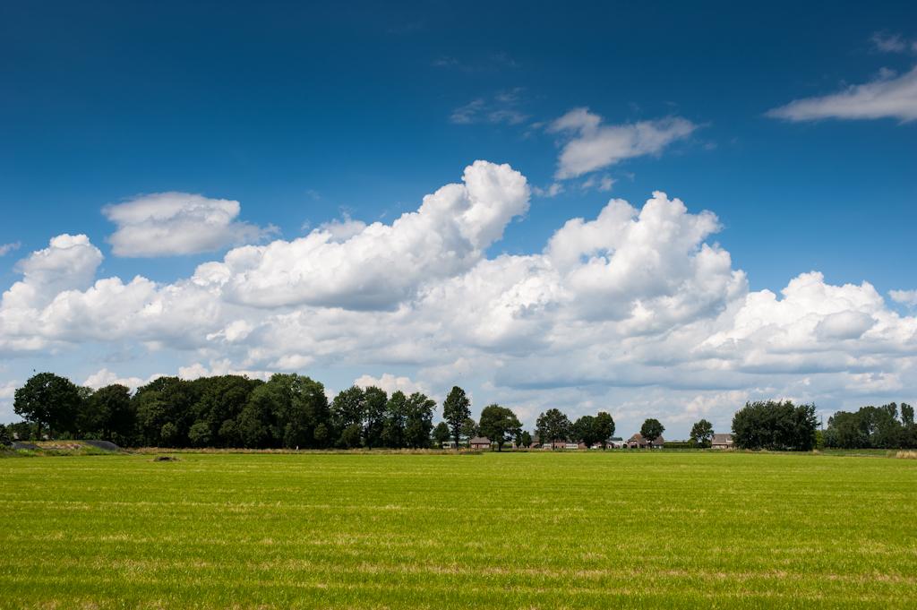 Brabant July 11th
